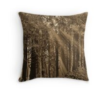 Morning In The Forest...Neptune Beach, Yachats, Ore. Throw Pillow