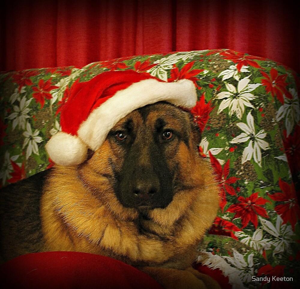 Santa Chance by Sandy Keeton