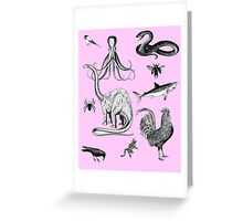 Into the wild.  Greeting Card