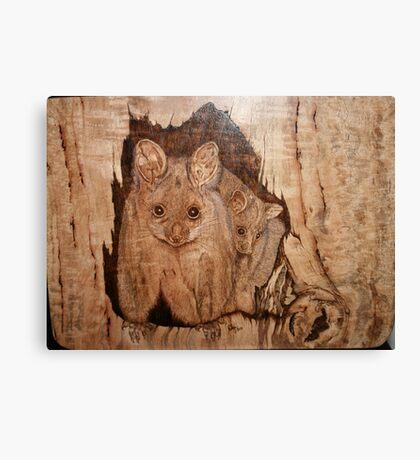 Possum Mum & Bub Canvas Print