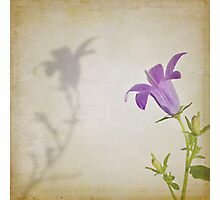 Dancing with my Shadow Photographic Print