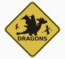 Funny Beware of Dragons Traffic Sign by cartoon-dragons