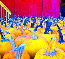 Pumpkins a-Glow by BlackHairMoe