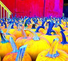 Pumpkins a-Glow by BlackHairMoe