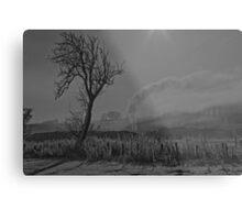 Snow scene, in black and white.  Metal Print