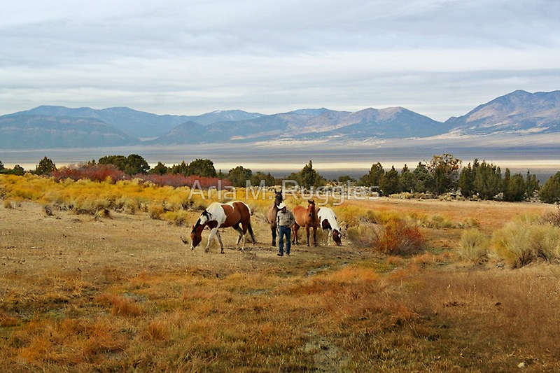 Home On The Range by Arla M. Ruggles