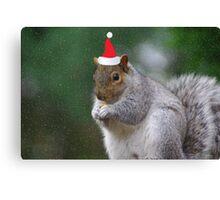 Squirrel Elf Canvas Print