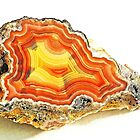 Laguna Agate by Bill Morgenstern