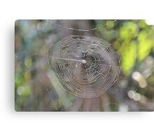 Spider Web in the Sun Canvas Print