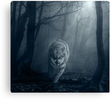 End of hope Canvas Print