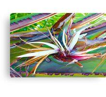 Banana Flower Canvas Print
