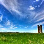Beautiful Vista by Billy Hodgkins
