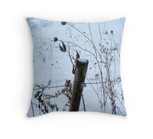 Fencepost & Weeds Throw Pillow