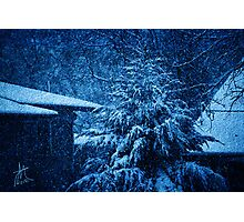Winter at Night Photographic Print