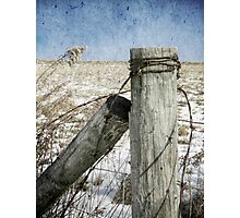 Of Wood And Wire Photographic Print