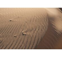 Sand Dune at Sunset, West Beach Photographic Print