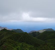 The green side of St Helena by dizzyshell42