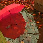 red by Mustafa UZEL