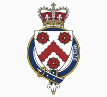 Coat of arms (family crest) for last-name or surname White (Ireland) . Heraldry banner for your name. by rita24