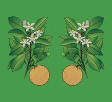 Orange Blossoms Baby Tee
