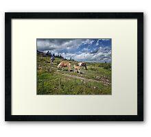 Hiking Grayson Highlands Framed Print