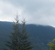 Misty Mountain by SheilaBailey