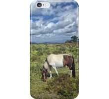 Grayson Highlans, Virginia iPhone Case/Skin