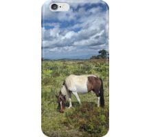 Grayson Highlans, Virginia iPhone Case/Skin