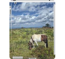 Grayson Highlans, Virginia iPad Case/Skin