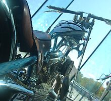 Bikes at OCC by angie coulston