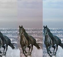 """3-Horses - Digital Manipulation"" by Tim&Paria Sauls"