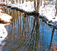 Reflections in the Stream III by David Davies
