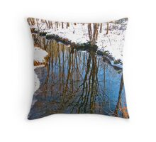 Reflections in the Stream III Throw Pillow