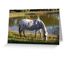 Evening Pinic By The Pond Greeting Card