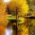 Autumn in Washington, New Hampshire by Monica M. Scanlan