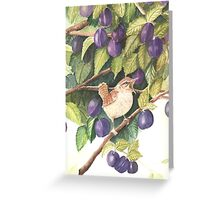Wren and Damsons Greeting Card