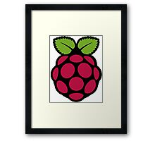Raspberry Fan [HD] Framed Print