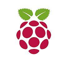 Raspberry Fan [HD] Photographic Print