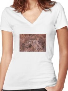 Cheetah Stare Women's Fitted V-Neck T-Shirt