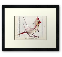 The Normal Cardinal Framed Print