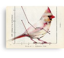 The Normal Cardinal Canvas Print