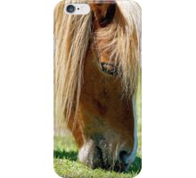 Pony Having a Snack iPhone Case/Skin