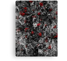 Red/Grey Canvas Print