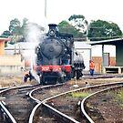Steamtrain Taree N.S.W.Australia. by Heabar