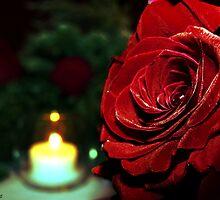 Lovelight... by Marcia Rubin