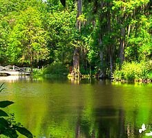 The Lake at Magnolia Plantation by Photography by TJ Baccari