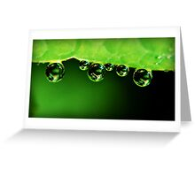 Water Drops x 6 Greeting Card