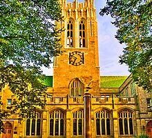 Study in Boston College by LudaNayvelt
