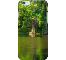 The Lake at Magnolia Plantation iPhone Case/Skin