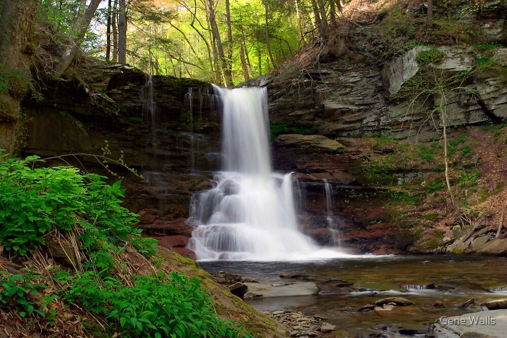 Spring Green Emerges At Sheldon Reynolds Waterfall by Gene Walls